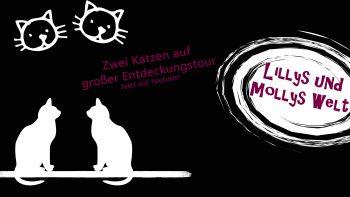 Lillys-und-Mollys-Welt-SLP